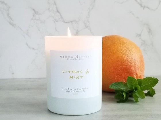 Citrus & Mint- 9 oz