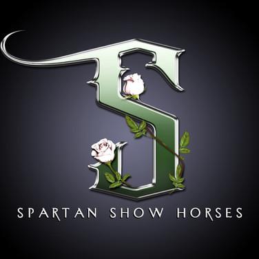 spartan3D.jpg