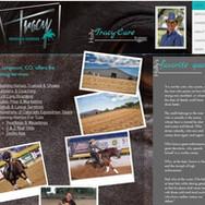tracy reining horses.jpg