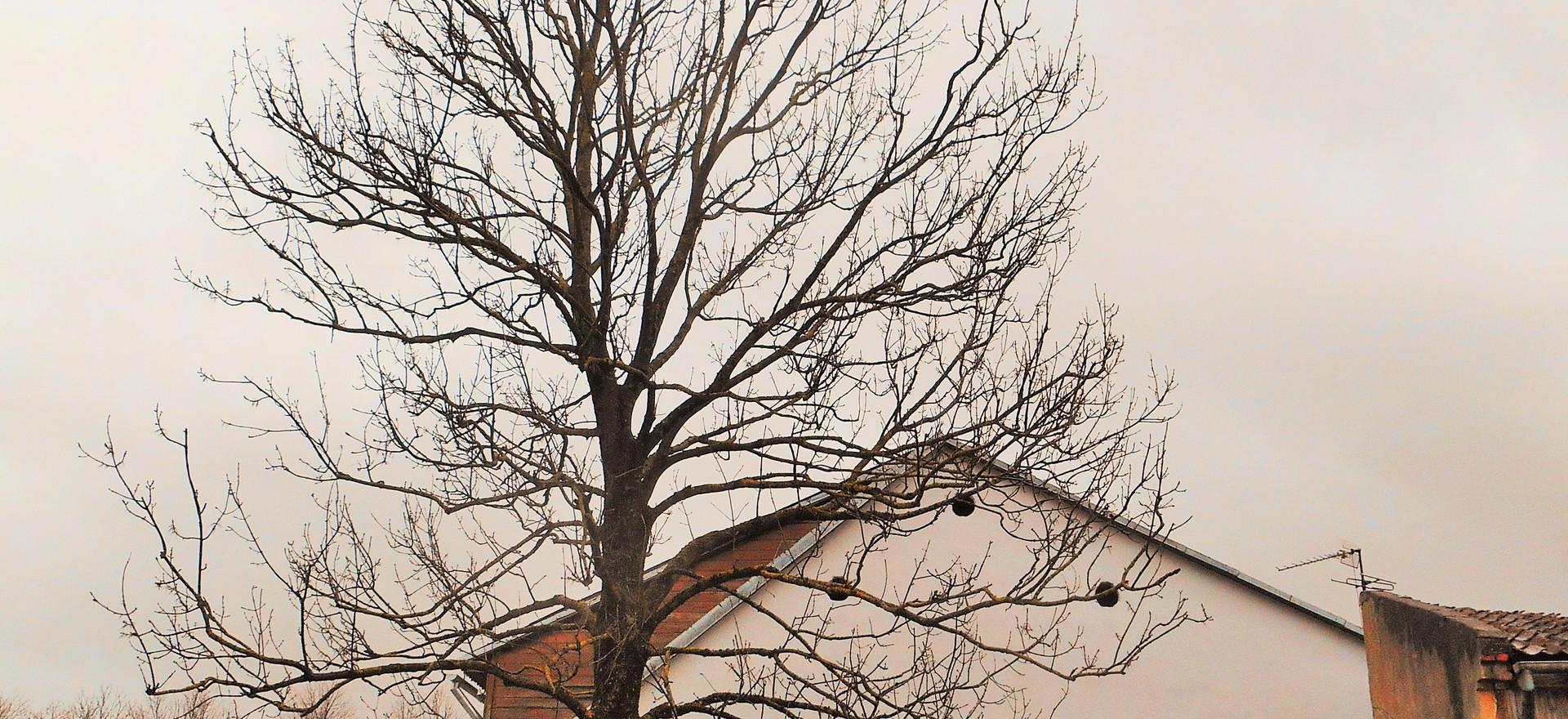 Selfportrait in silence, Kuldiga, April 2017