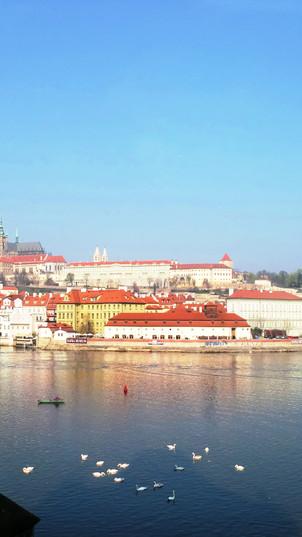 Прага — город литературы ЮНЕСКО
