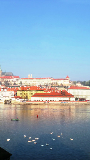 Prague UNESCO City of Literature