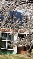 Wonju UNESCO City of Literature