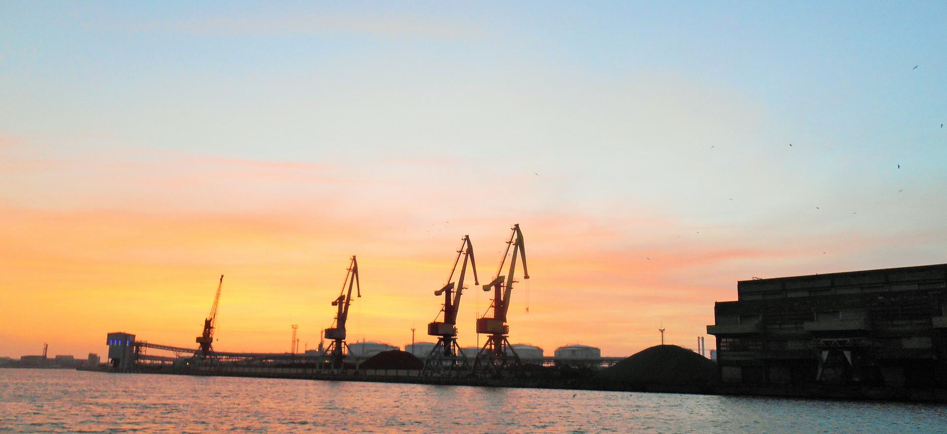 Giraffes dialog at sunset, Ventspils, April 2017