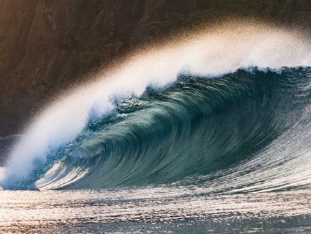 O melhor verão de surf de todos os tempos?