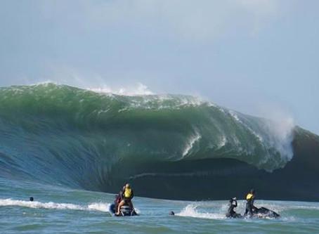 Ondas gigantes, vacas e muito surf - Confira tudo o que rolou no maior swell do ano no Brasil