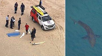 Surfista morre após ataque de tubarão em Gold Coast, na Austrália