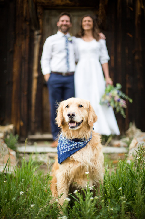 Andrea and Dave Wedding | June 20 2020 (