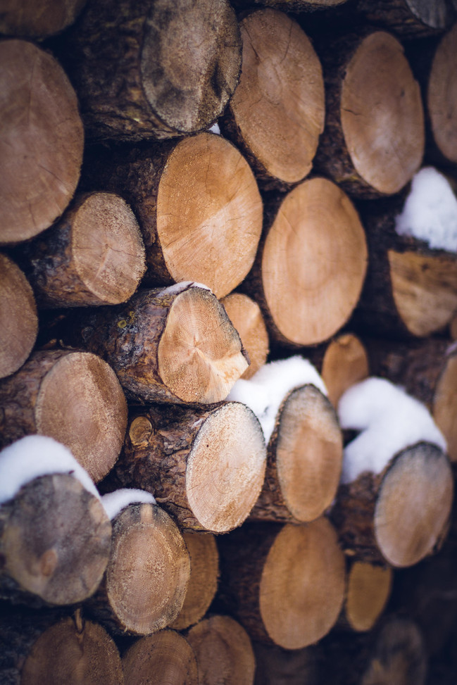 Vail - ice and logs-1.jpg