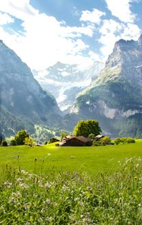 Switzerland 2013-1.jpg
