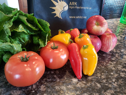 6 Questions to ask yourself before signing up for CSA