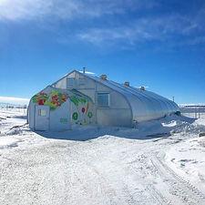 greenhouse-feb27-2018.jpg