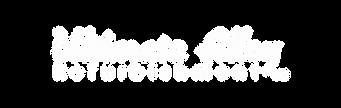 UA Logo text.png
