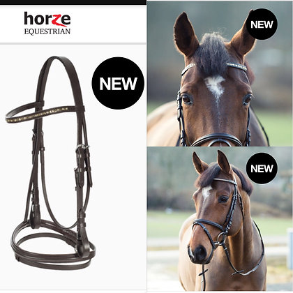 English Bridle set with Bling and Drop Noseband