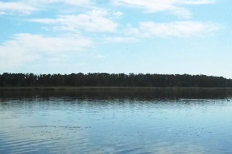 Вид на речку турбаза Рубин