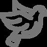 schädlingsbekämpfung-aachen-tauben