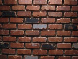 רוב מהומה על חומה