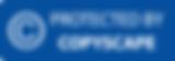 copyscape-banner-blue-160x56.png