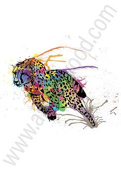 Cheetah-01.jpg
