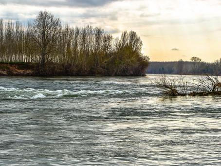 Les pierres gravées et englouties de Garonne