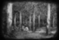 Lode_Claes_-_The_Old_Forest.png