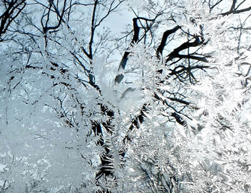 A New Year, Day, Week and Colors of Winter . . . .