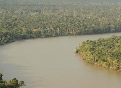 Operação Verde Brasil 2 encerra com queda de 19,15% no desmatamento na Amazônia Legal