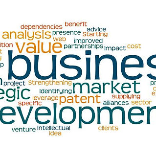 Bobby Bach - Sisu Strategic Solutions