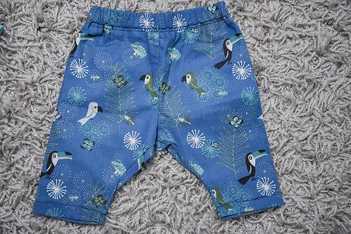 pants jungle