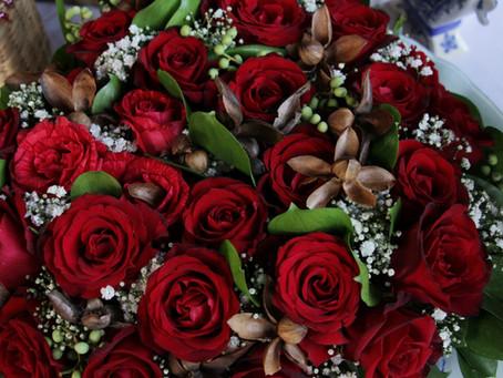 Brasil produz mais de 350 tipos de flores e plantas ornamentais