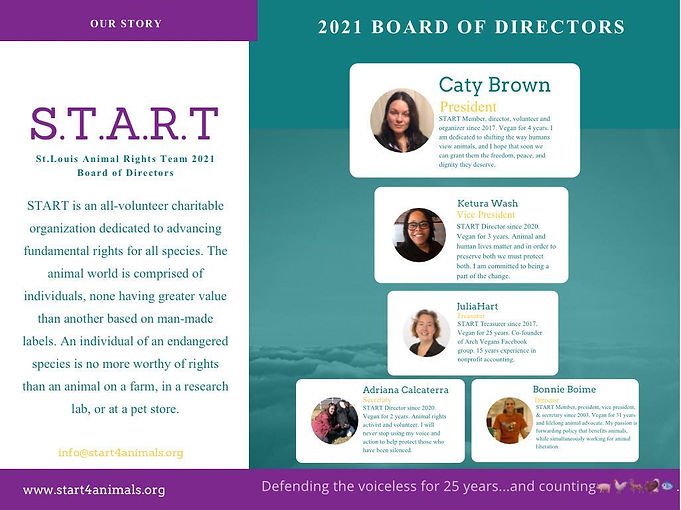 start board.jpg