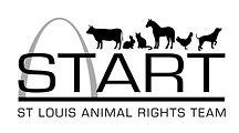 New START Logo.jpg