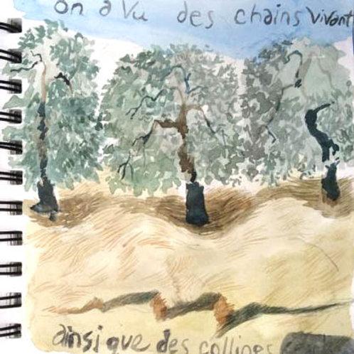 Sketchbook: California No. 6