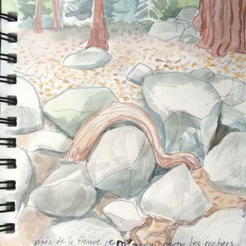 Sketchbook: California No. 16
