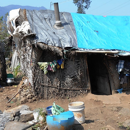Geneva International Students Build Shelter
