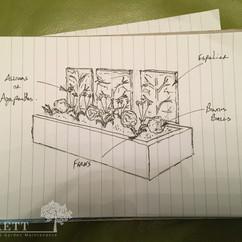 Planting_Plan