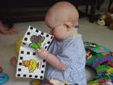 Image of a baby wearing glasses reading a beginning reader.
