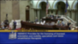 Image of the NYS Assembly floor noting the passage of the O&M license bill June 18, 2015.