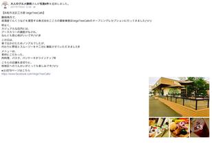 『大人のグルメ静岡』FaceBookに「Vege Tree Cafe」を取り上げていただきました