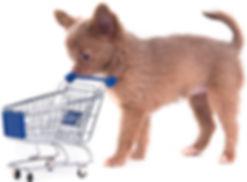 dog pushing shopping cart