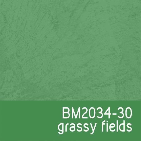 BM2034-30 Grassy Fields