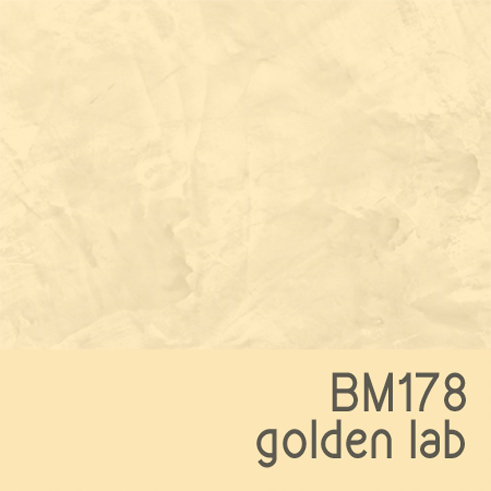 BM178 Golden Lab