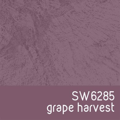 SW6285 Grape Harvest