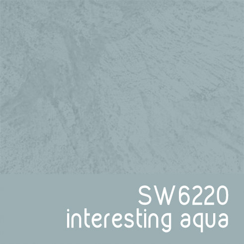 SW6220 Interesting Aqua