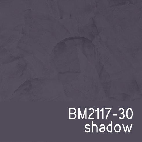 BM2117-30 Shadow