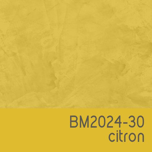 BM2024-30 Citron