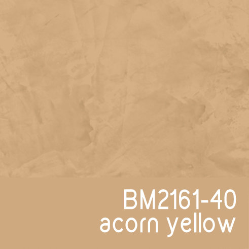 BM2161-40 Acorn Yellow