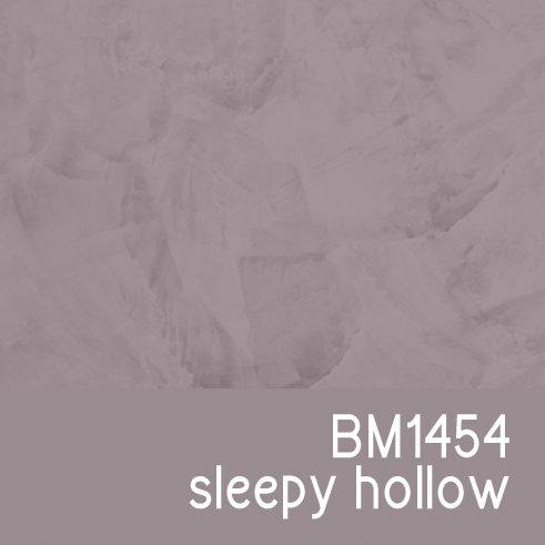 BM1454 Sleepy Hollow