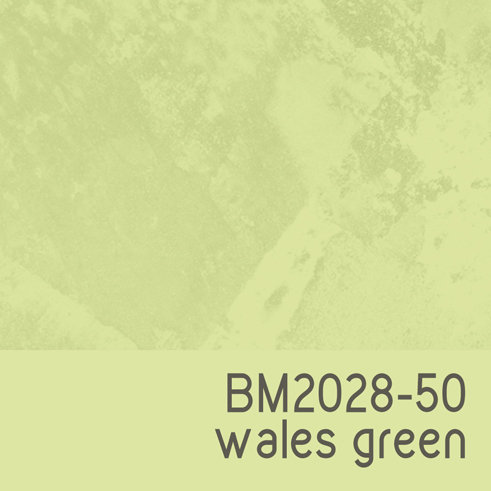 BM2028-50 Wales Green