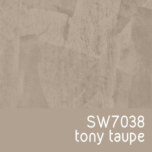 SW7038 Tony Taupe